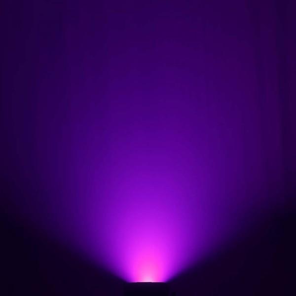 Cameo FLAT PRO FLOOD IP65 TRI - Outdoor Fluter mit 60W Tri-Color COB-LED in Schwarzem Gehäuse